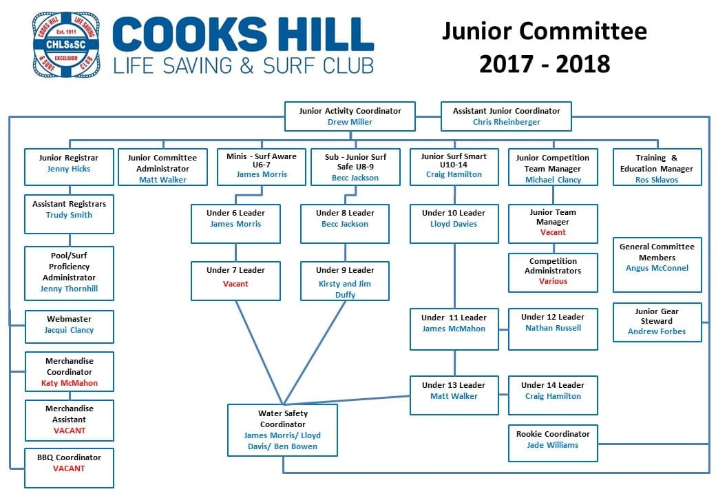 Junior Committee Structure Aug 17